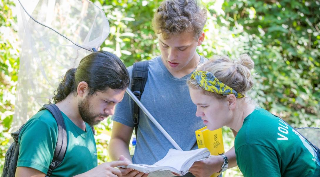 Des volontaires étudient les papillons au cours de leur mission d'écovolontariat au Costa Rica.